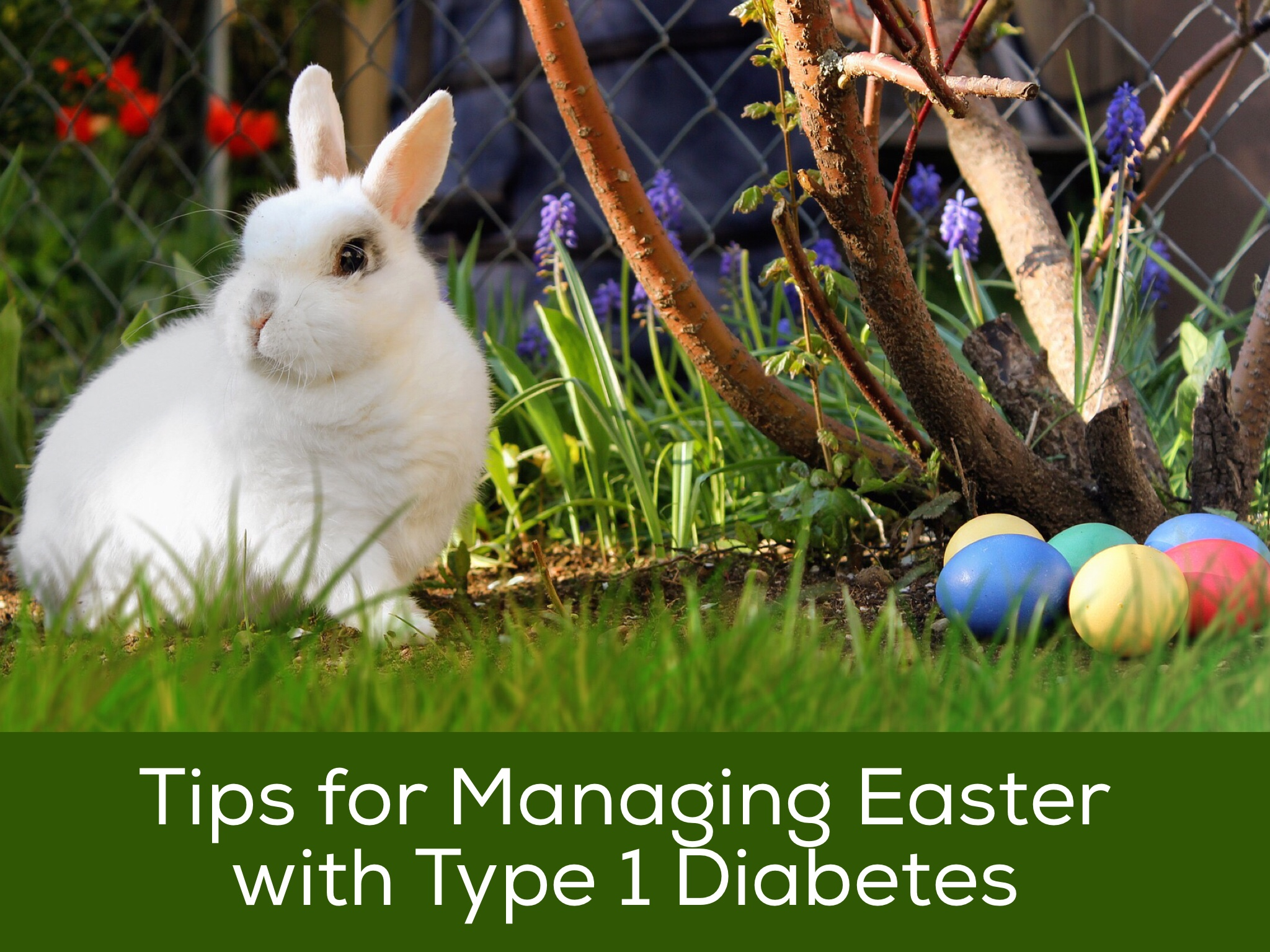 Easter with Diabetes